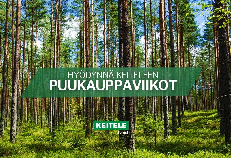 Työnäyte: Keitele Forest, puunhankintakampanja, internet-sivut